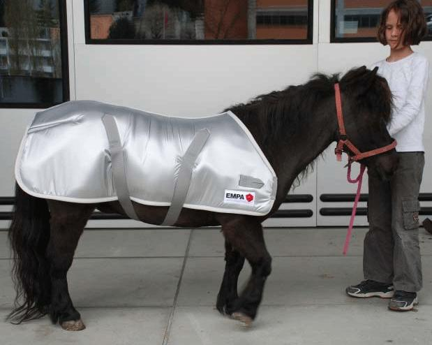 It Isn't Just Humans Using Special Materials In The Olympics - Horses Do Too