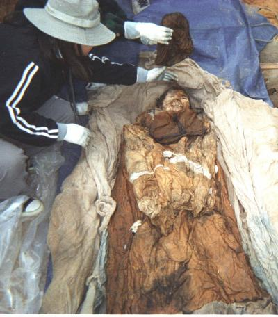 Korean Mummy Had Hepatitis B?