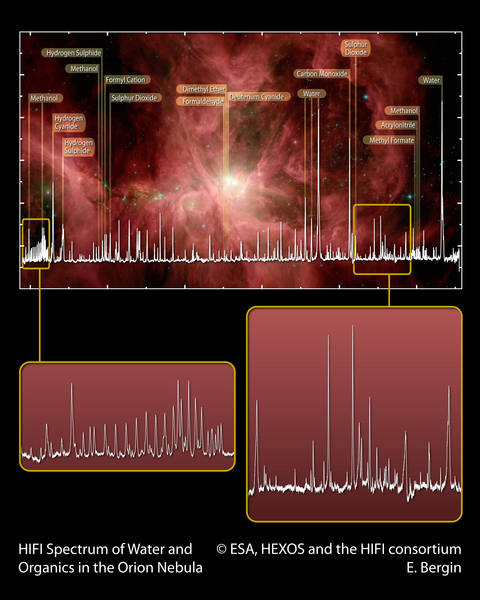 Life In Deep Space? Organic Molecules Found In The Orion Nebula