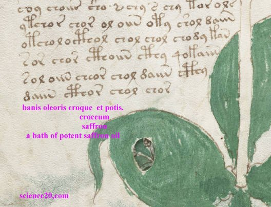 The Keys to the Voynich Manuscript