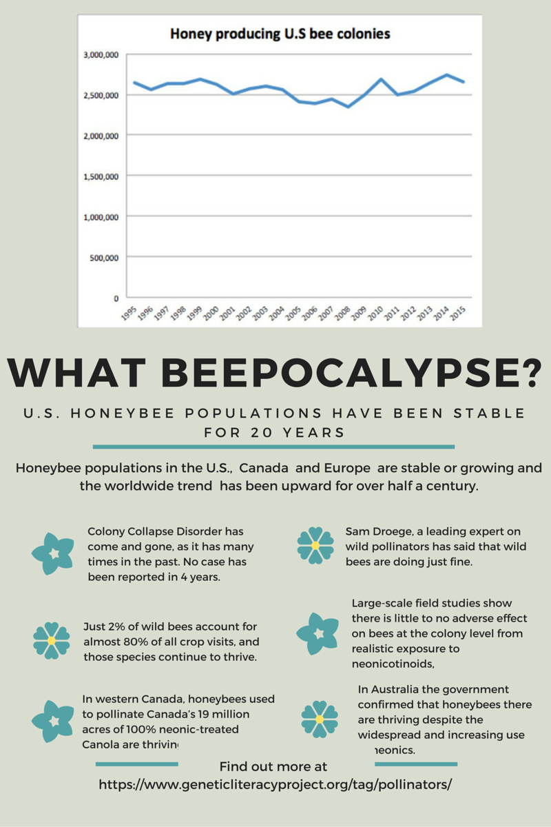 What Beepocalypse?