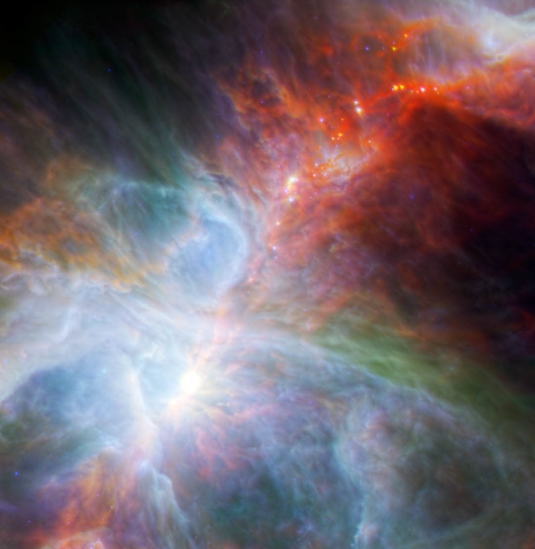 Baby Stars In Orion Nebula
