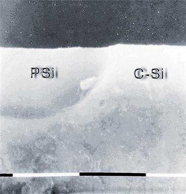 Cross-section SEM picture of Si wafer after the anodization process