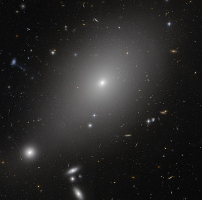 Cannibal Galaxies Ate Their Neighbors?