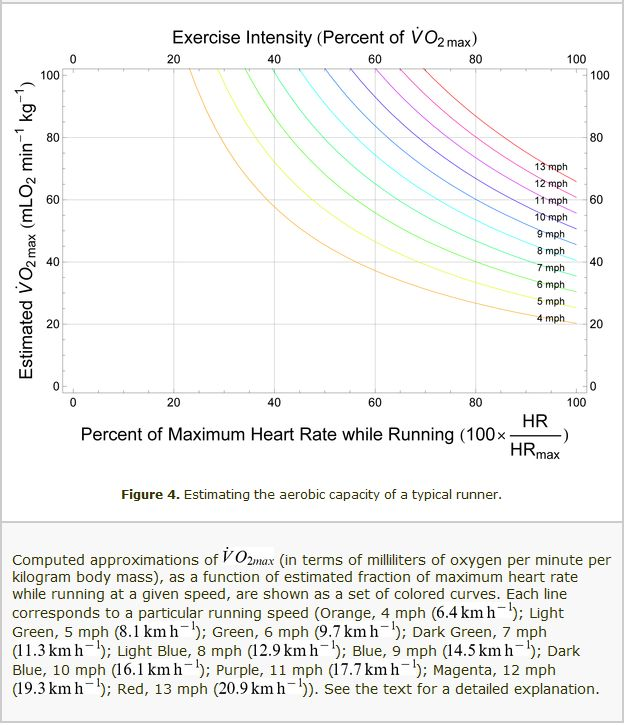 Estimating the aerobic capacity of a typical runner
