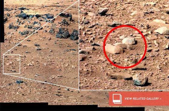 Mars On Earth® - Biosphere Foundation