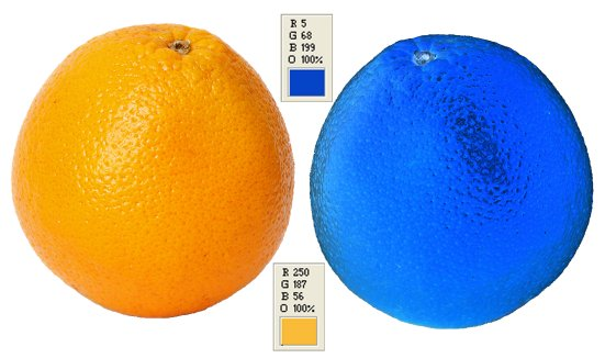 What Color Is An Orange ?