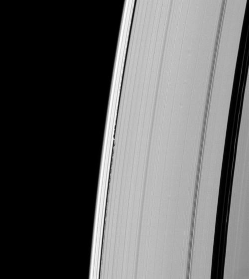 Saturn Waves from Daphnis