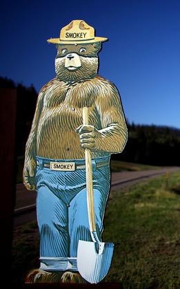 It's Not Smokey Bear's Fault!