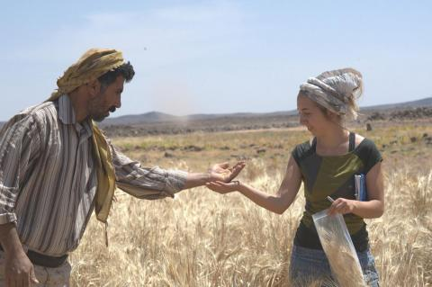 Hunter Gatherers Baked Their Own Bread 14,000 Years Ago - 4,000 Years Before Agriculture