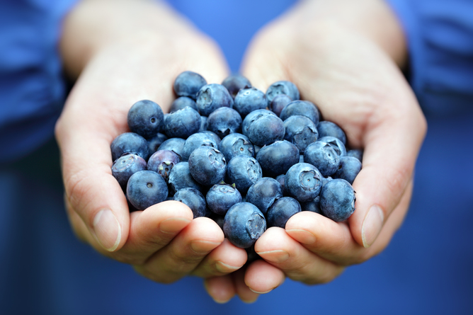 Why Antioxidants Might Make Your Cancer Worse