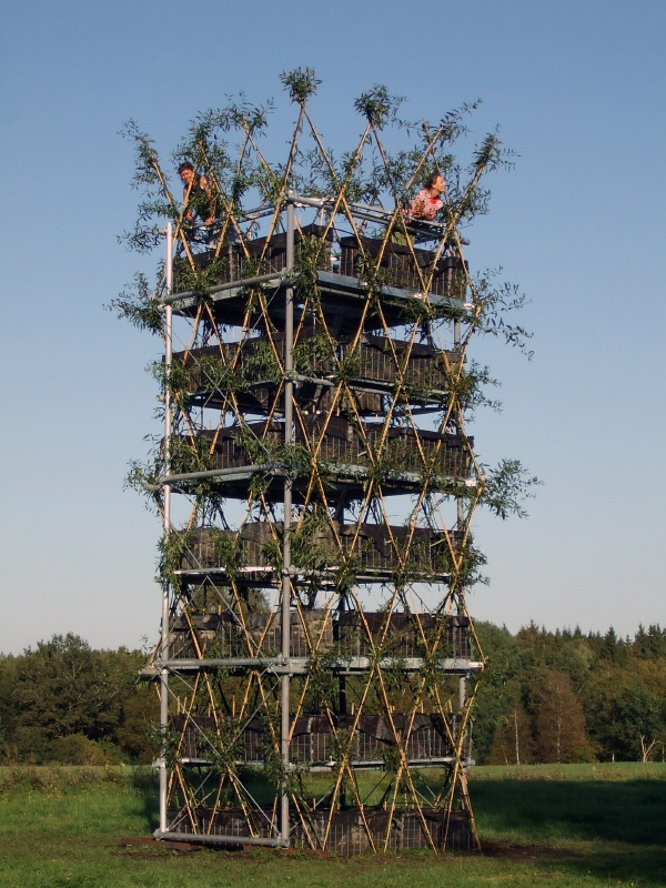 arbo architecture tower made from living trees