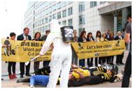 Bees: Activists Remain Silent While This Pollinator Killer Decimates Millions