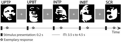 Predictive Coding Theory: How Our Brains Recognize Faces From Minimal Information