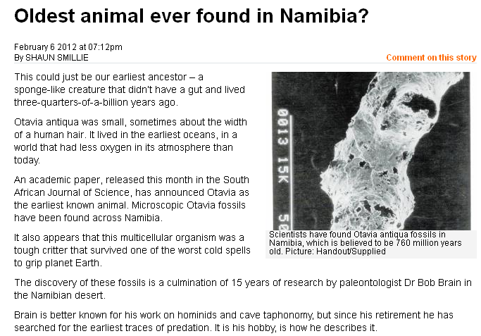 Earliest Animal Fossils? Uhhh, No