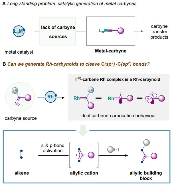 Sticks And Stones May Break Your Bones But This Carbene/Carbocation Reaction Edits Molecular Skeletons
