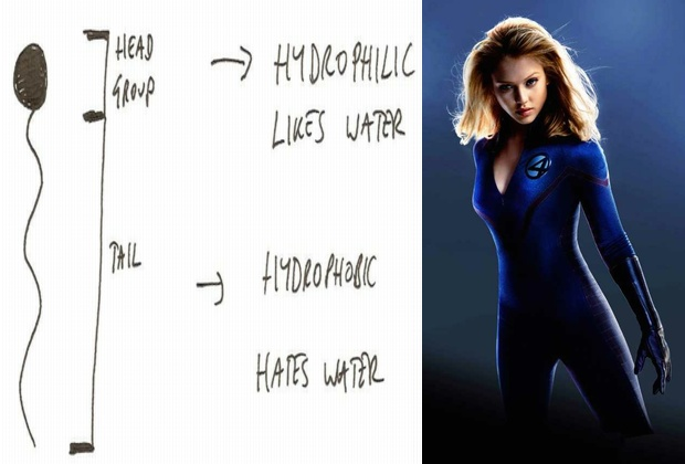 characteristic curvature using jessica alba and hydrophilics