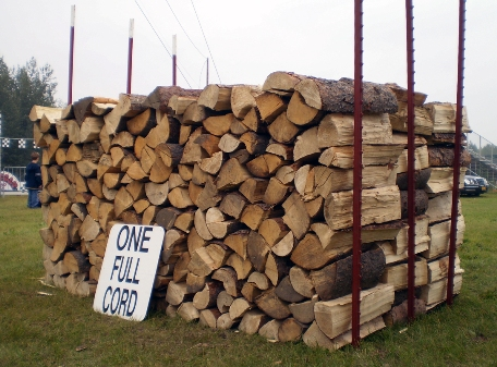 Wood Heat: Why The Developing World Needs Centralized Energy, Even If It's Coal