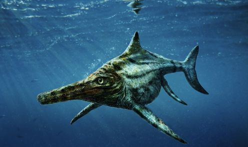 Not The Loch Ness Monster, But A Jurassic Sea Reptile Has Been Found In Scotland