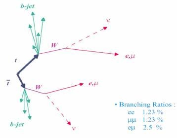 Modeling Issues Or New Physics ? Surprises From Top Quark Kinematics Study