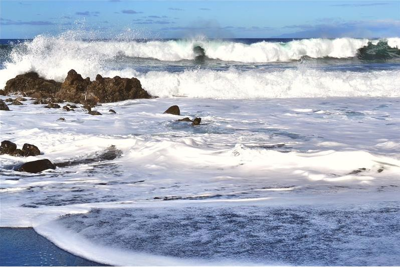 Bacteria's Role In Long-Term Ocean Carbon Storage