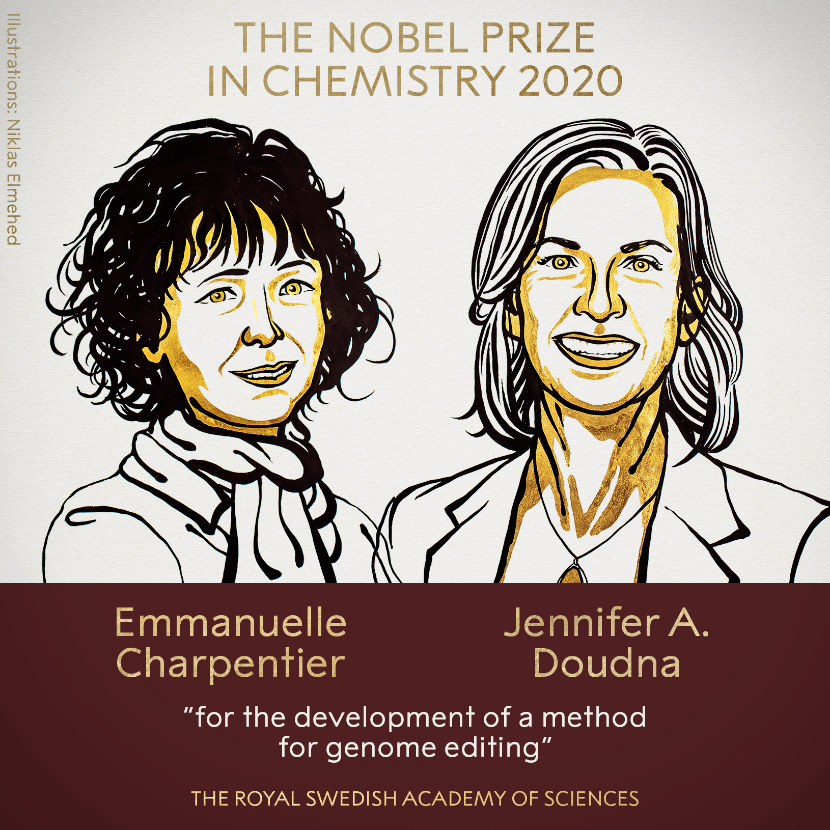 The Nobel Prize For CRISPR-Cas9: Here's Who Got Left Out