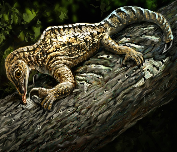 Bizarre Forelimb Evolution In Ancient Drepanosaurus Fossil