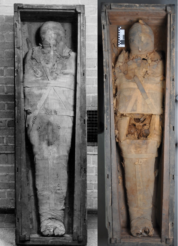 Mummy Madness In The Anatomical Record - All Open Access