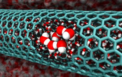 The Water Problem In Carbon Nanotubes