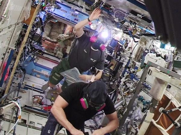Space Station False Alarm Keeps Science Flies From Their Breakfast