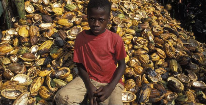 Would You Pay 47% More To Eliminate Child Labor From Your Cocoa?