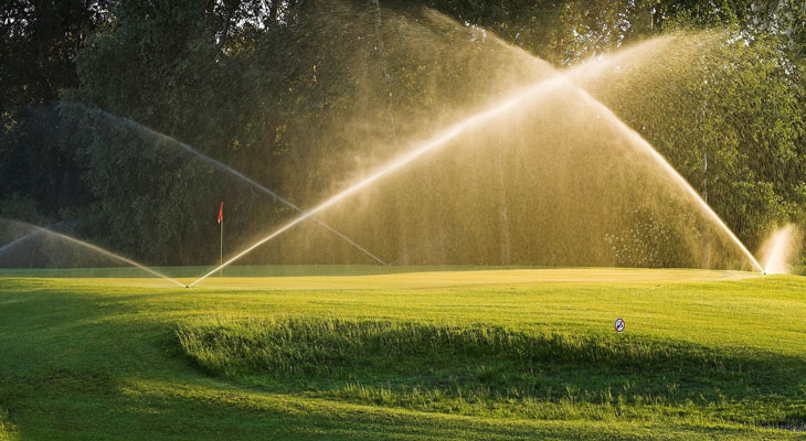 Genetically Engineered Golf: How Science Is Helping Reduce Water Use
