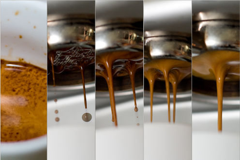 how to make the perfect cup of coffee How To Make The Perfect Cup Of Coffee French Press