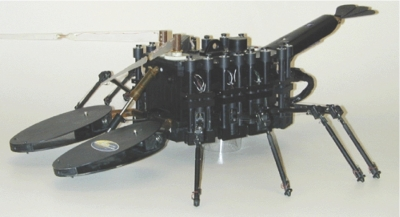 photo of biomimetic lobster robot from Northeastern University