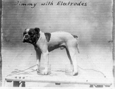 Jimmy with electrodes