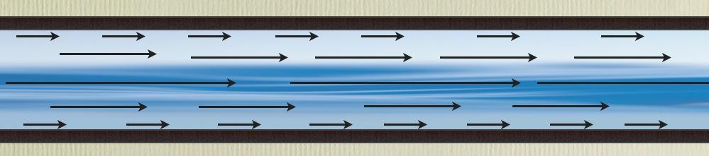 Explaining Laminar Flow Biology Style