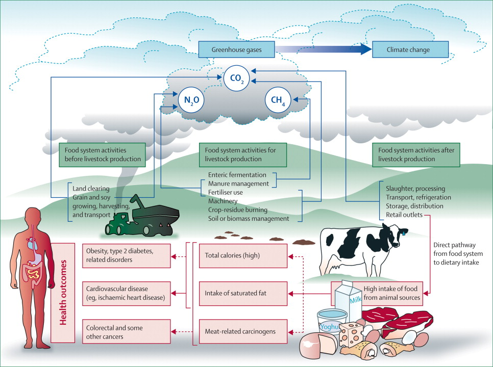 the Lancet (Food, Agriculture, Health, GHG Lifecycle)