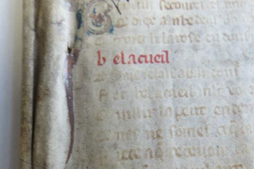 'Le Roman De La Rose': 1280 AD Manuscript Was Part 'Twilight', Part '50 Shades Of Grey'
