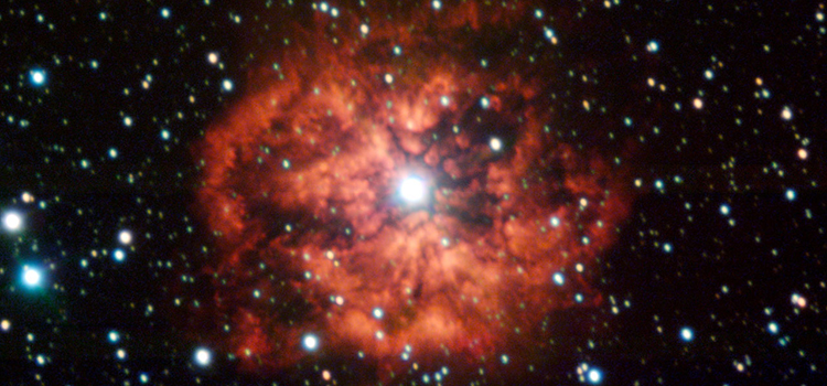 How Would Life Develop If Fundamental Physics Constants Were Different?