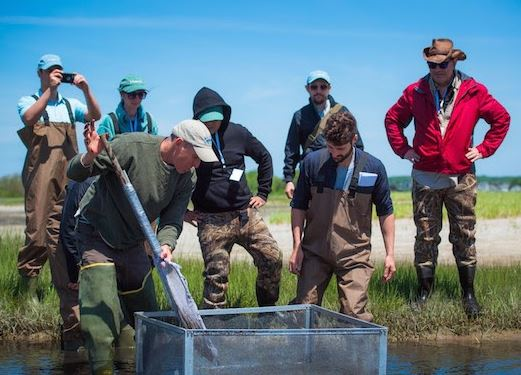 If You Want To Write About Water Supplies, Food Production, And Global Warming, Apply For The Metcalf Institute Science Immersion Workshop