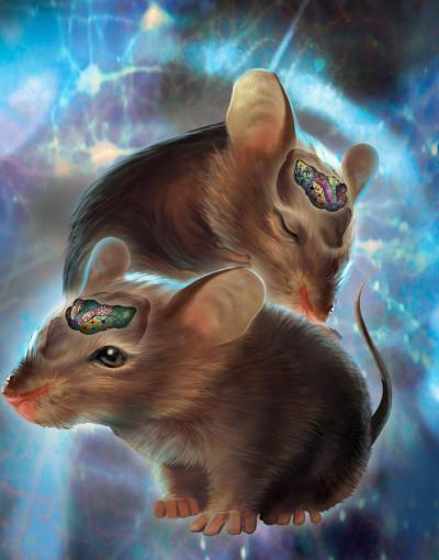 Scientists Control Mouse Brains Using Lasers