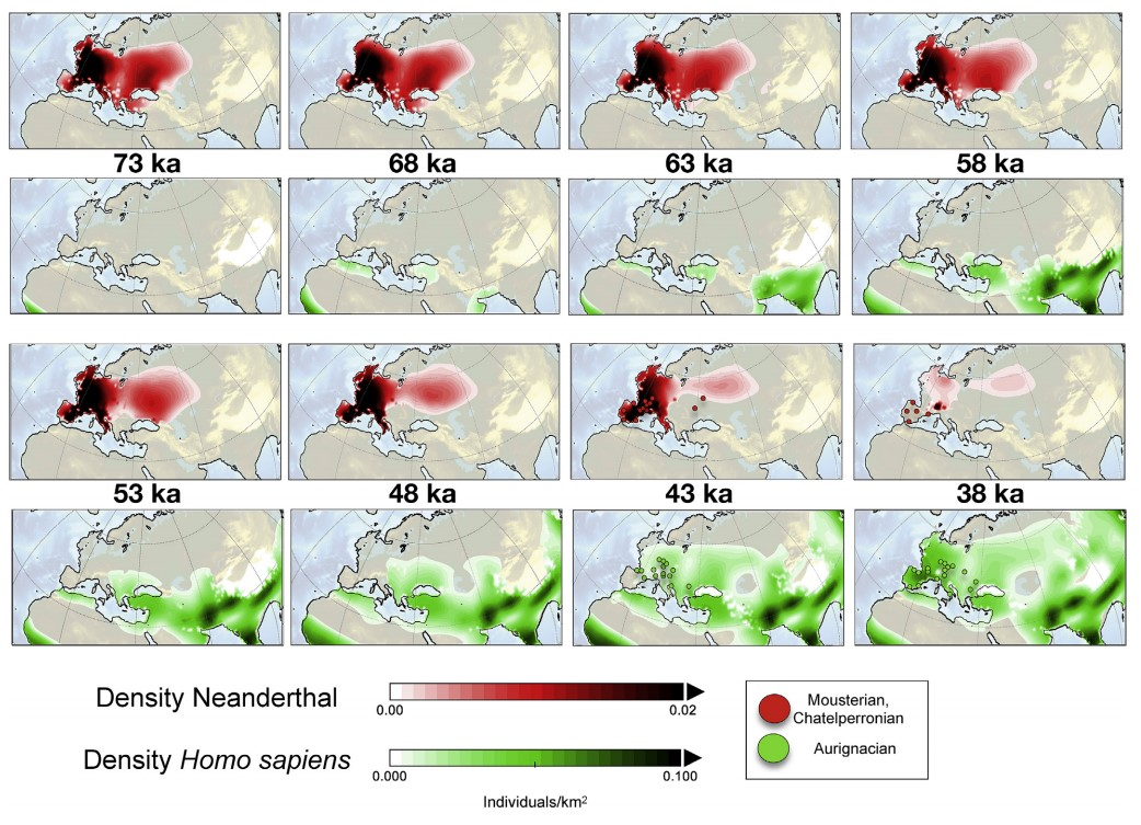 Extinction: Maybe Cro-Magnon Wiped Out Neanderthals After All