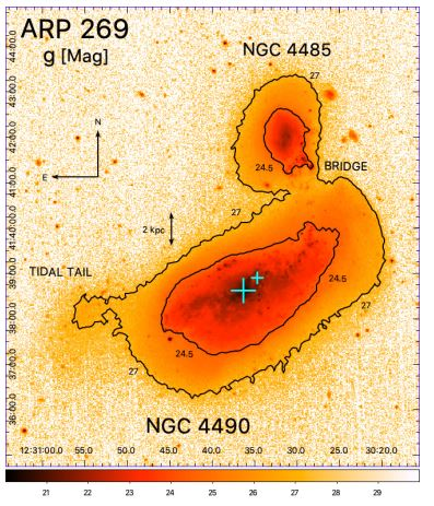 NGC 4490: The Cocoon Galaxy Turns Out To Have A Double Nucleus Structure