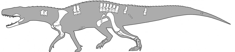 Nundasuchus Songeaensis: The Scary Predator Crocodile That Preceded Dinosaurs