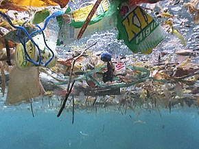 Wiew under floating plastic waste in ocean surface