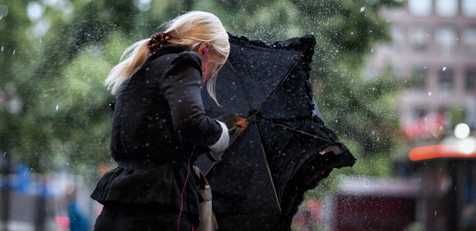 Petrichor: How The Term For The Smell Of Rain Came To Be