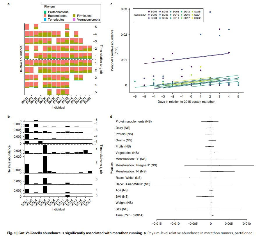 Attention Athletes: Get Ready For Performance-Enhancing Bacteria Probiotic Microbiome Omics Hype