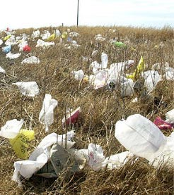 Plastic bags disposed of in the environment