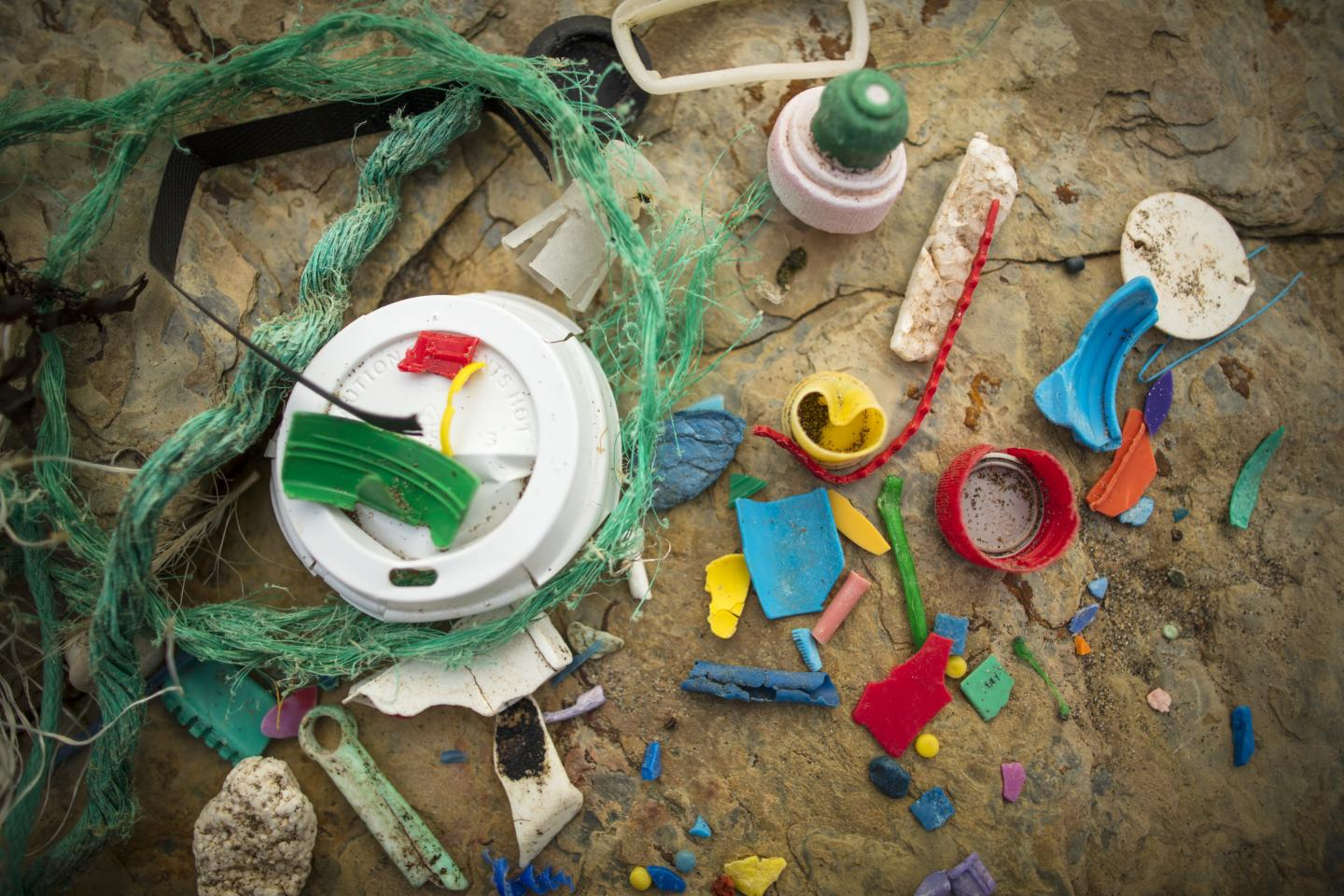 Marine Litter: The Public Mistakenly Trusts Environmental Groups, And That Impedes Progress