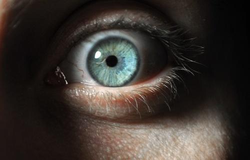 Psychopaths And Sadists: Why Do Humans Harm The Harmless?